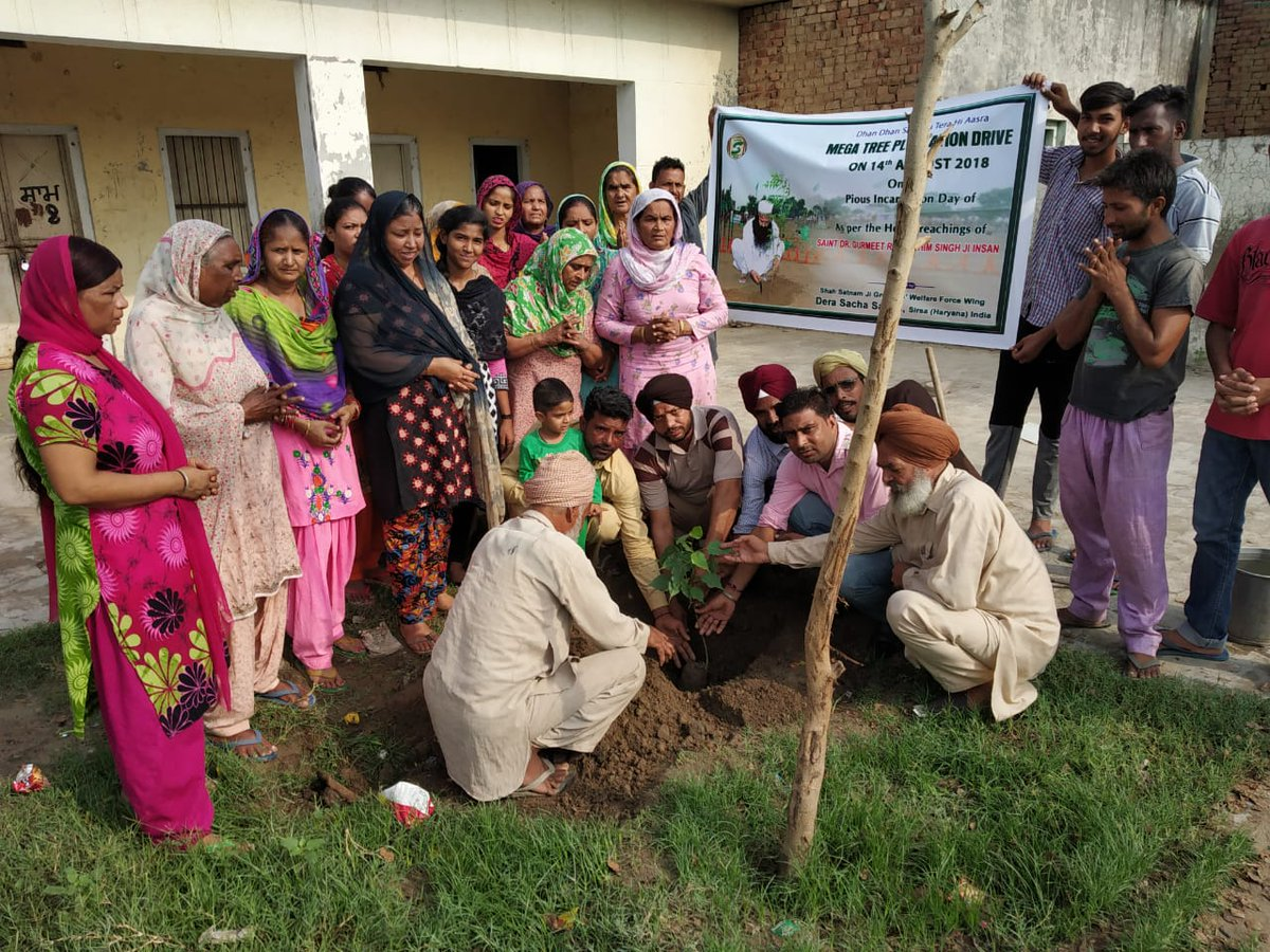 #TreePlantation_BdayGiftToMSG @derasachasauda  @Gurmeetramrahim  g Every year followers celebrate lord&#39;s birthday by planting to give birthday gift not only to guru pa but to nature also <br>http://pic.twitter.com/3voT97AzNm