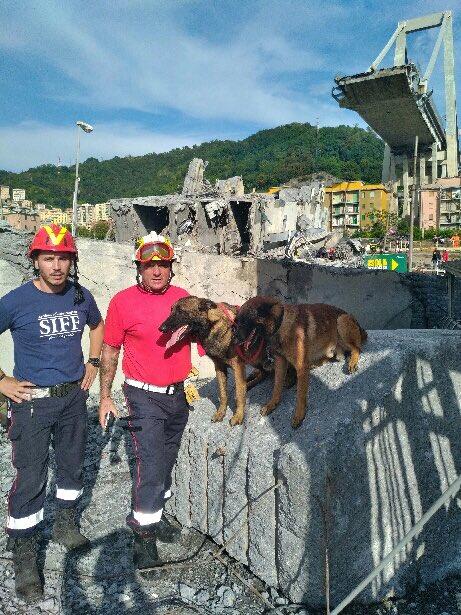 Merci à Patrick Villardry formidable et courageux maître-chien et à Pierre Borghini de l'association ULIS, deux pompiers azuréens présents à #Gênes pour aider les pompiers italiens #PonteMorandi