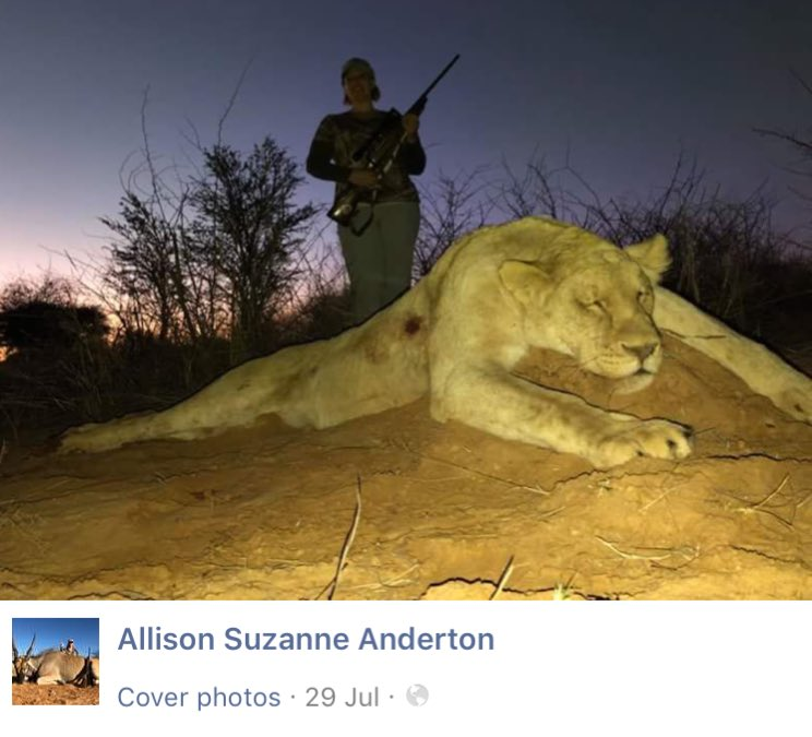 This American trophy killer is a nurse &amp; a booking agent for one of the biggest canned lion hunting operations in South Africa. She &amp; her friends would like to make shoes and bags out lions. It shows that these revered African animals mean zero to these people. @Protect_Wldlife<br>http://pic.twitter.com/tLMjW7212g