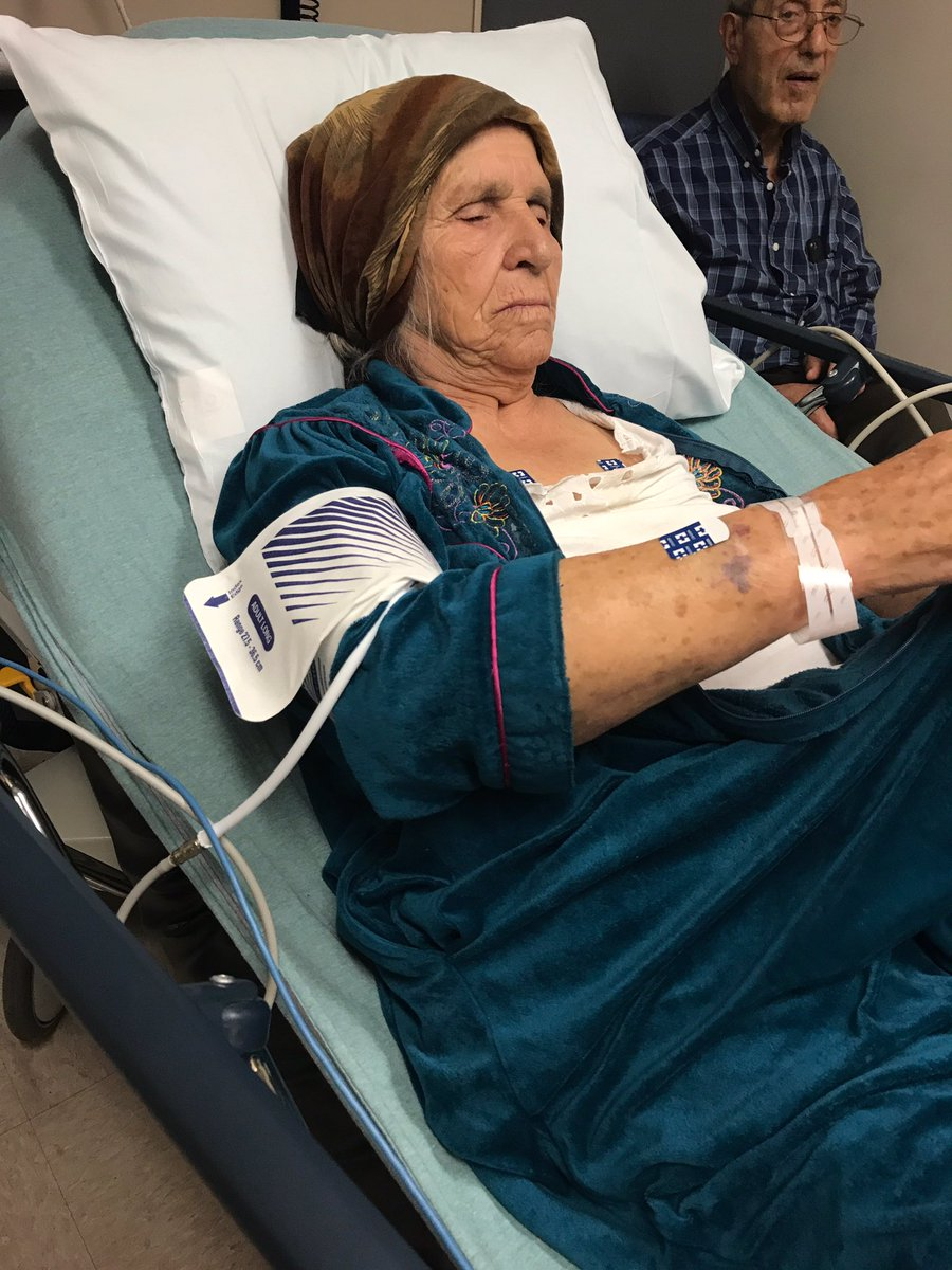 DklVibcU0AACUTU - Police tase 87-year-old grandmother who used knife to cut dandelions