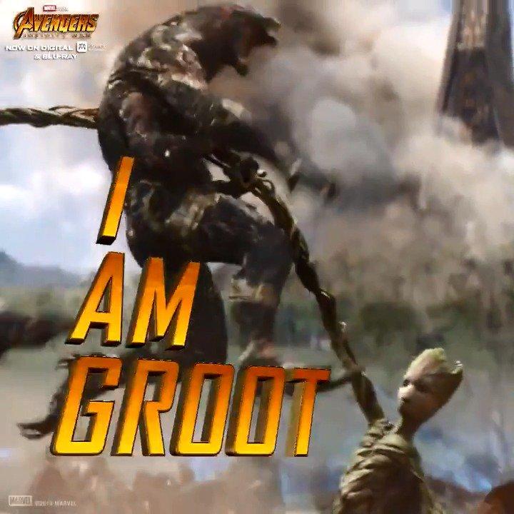 I am Groot. #InfinityWar https://t.co/GVcnPrR1sC
