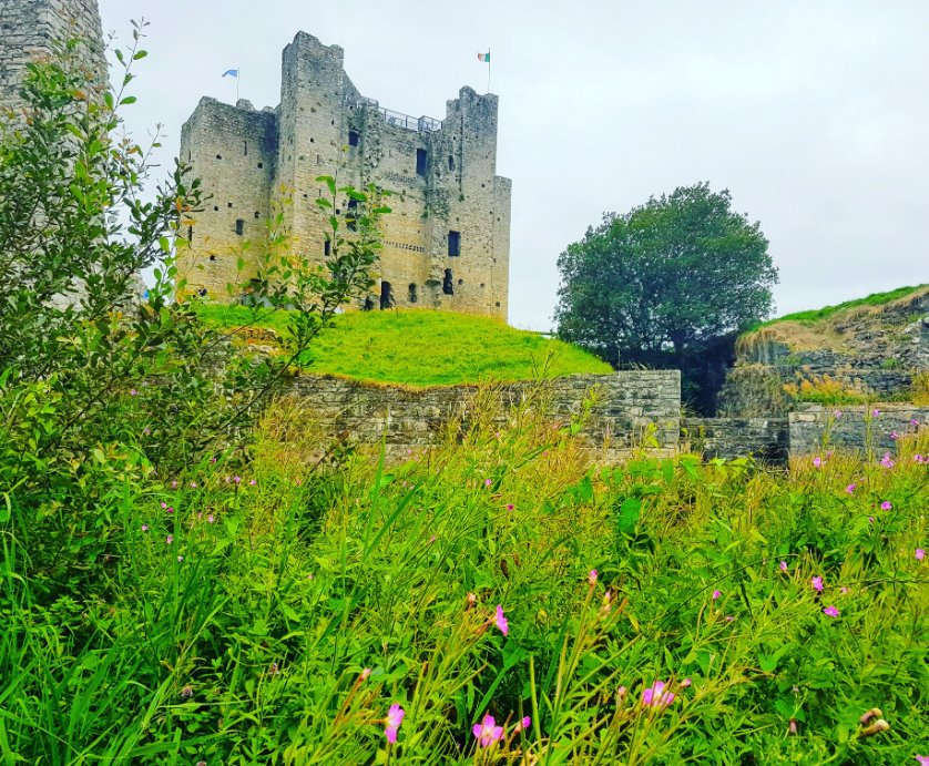 Whats On   Boyne Valley Meath, Ireland - Discover Boyne Valley