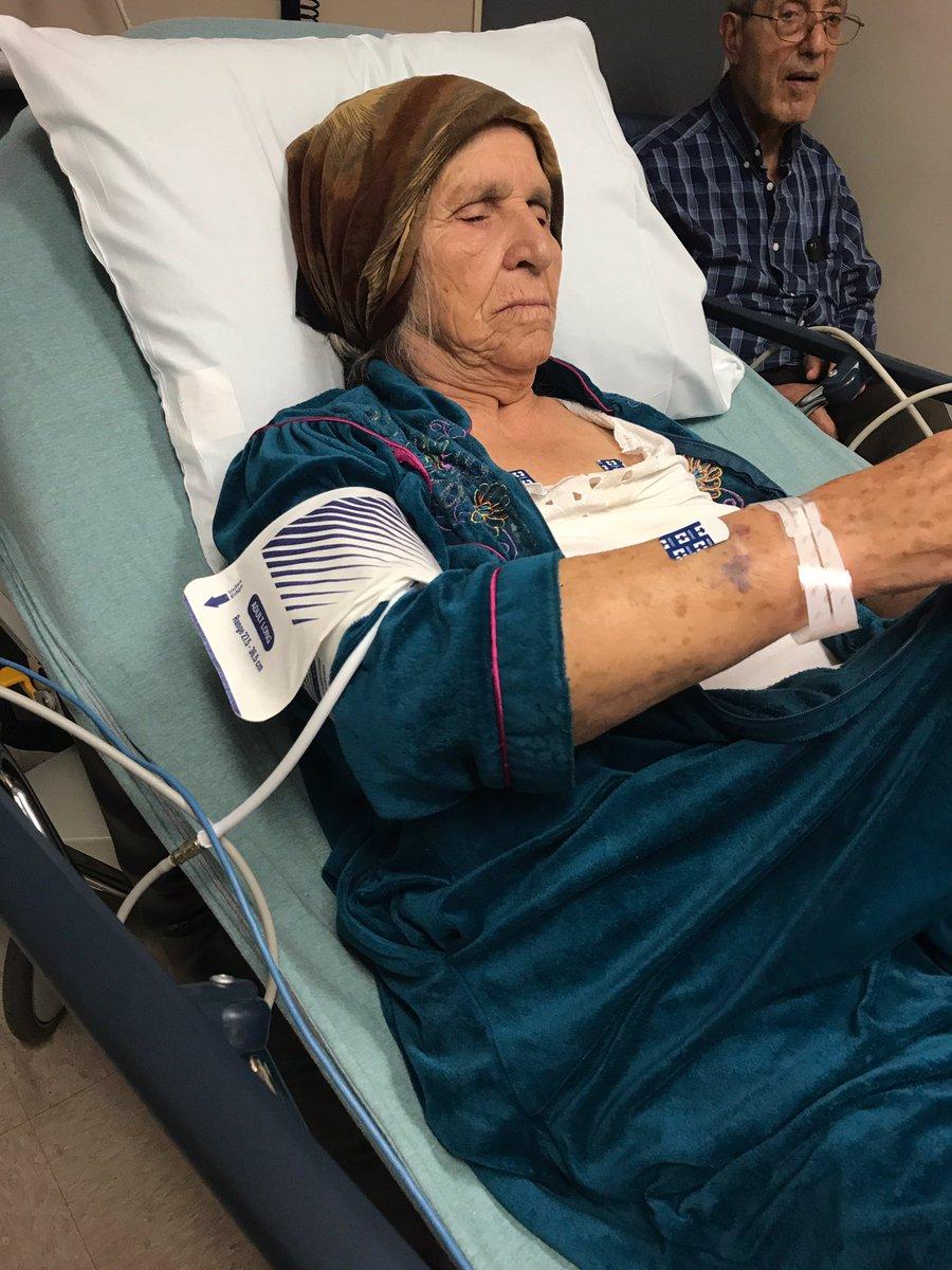 Dkly7DJUUAARIFm - Police tase 87-year-old grandmother who used knife to cut dandelions