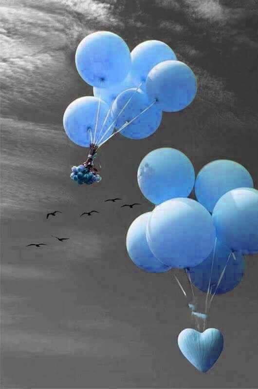Hayallerin bile ; İnsanları kandırdığı bir dünya da ; Ben kimseye kolay kolay inanmam..!! #maviningölgesi mavi🍁