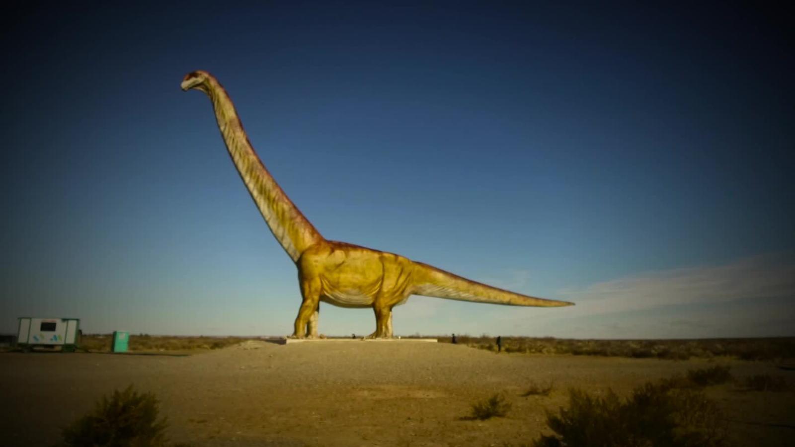 ¿Por qué se han descubierto tantos dinosaurios en Argentina? https://t.co/txmoTMp13z Sigue a @CNNArgentina https://t.co/31PrdRNBCy