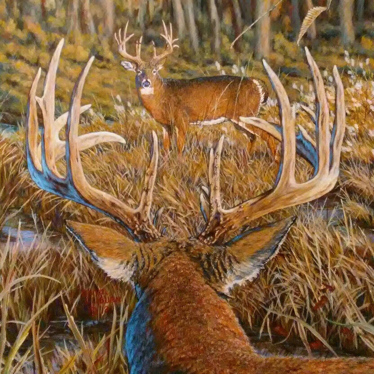 A sneak peek at the painting that is the back of our newest t-shirt. This is an original from wildlife artist, Daniel Cliburn. Available this week at Buckarama, in Perry, GA. #N1outdoors #Buckarama<br>http://pic.twitter.com/fC6785PnwN