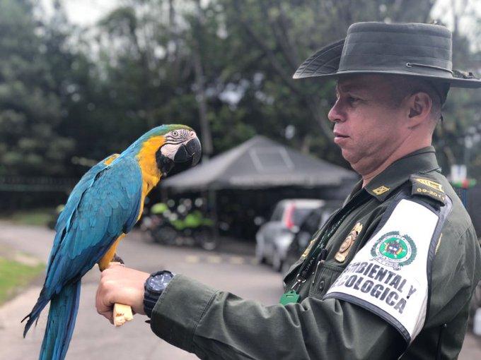 Es compromiso de todos, proteger y preservar nuestra fauna silvestre. #FelizMiércoles Photo