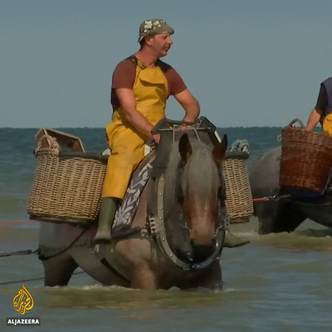 These Belgian horseback fishermen are keeping a centuries-old tradition alive. https://t.co/CULg4Lf0Ge