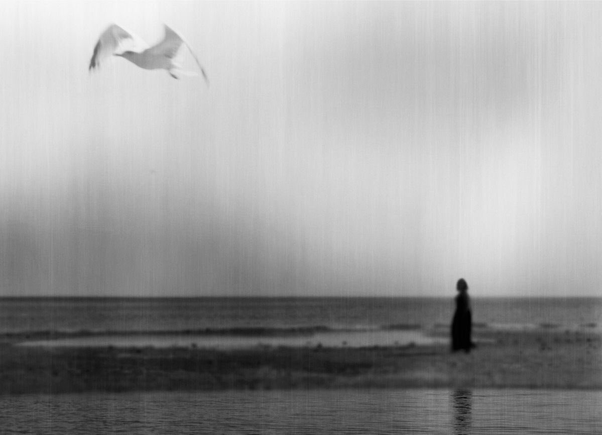 """""""And once more, in the middle of August,  I was arrowing through the solitudes of the sky""""  Simone de Beauvoir ~ Force of Circumstance  Photography © Milena Seita <br>http://pic.twitter.com/W7grxhLkNS"""
