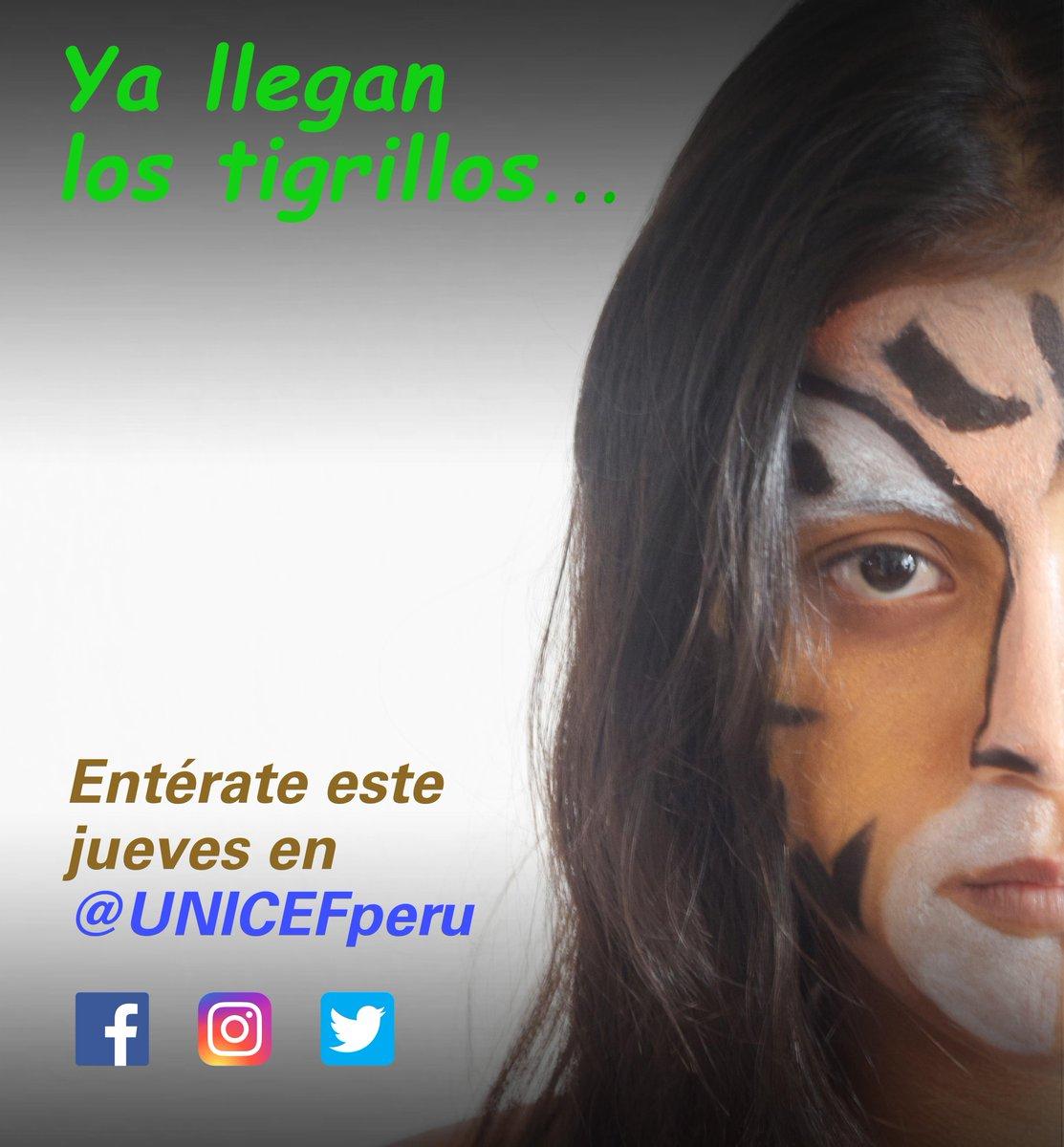 test Twitter Media - 🐯  🐯  🐯  Ya llegan los tigrillos… Síguenos en @UNICEFperu y entérate qué tienen por decir este jueves a las 11:00 a.m. https://t.co/zs1jDBPAPZ