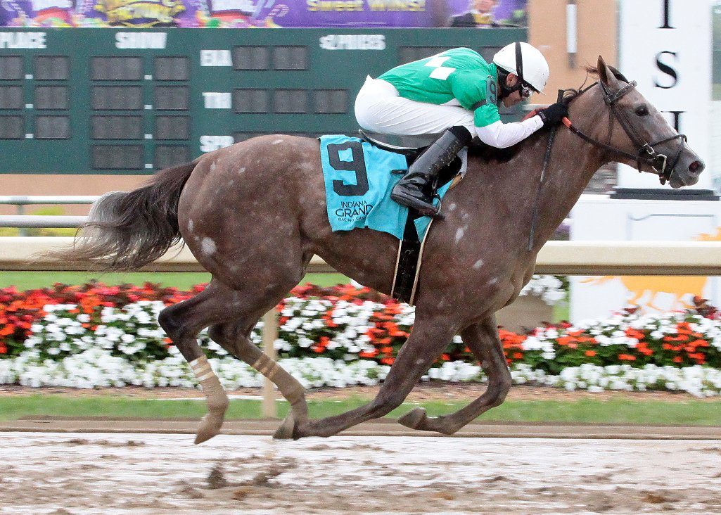 Flurry and Marcelino Pedroza Jr. were dominant in the $150,000 IN First Lady Stakes @IGRaceCourse Wed. Aug. 15:  https:// indianagrand.com/racing/flurry- hustles-in-150000-indiana-first-lady-stakes/ &nbsp; …  #INDbred @RacingRachelM @NancyUryHolthus @billdownes1<br>http://pic.twitter.com/cET4LT1JtN