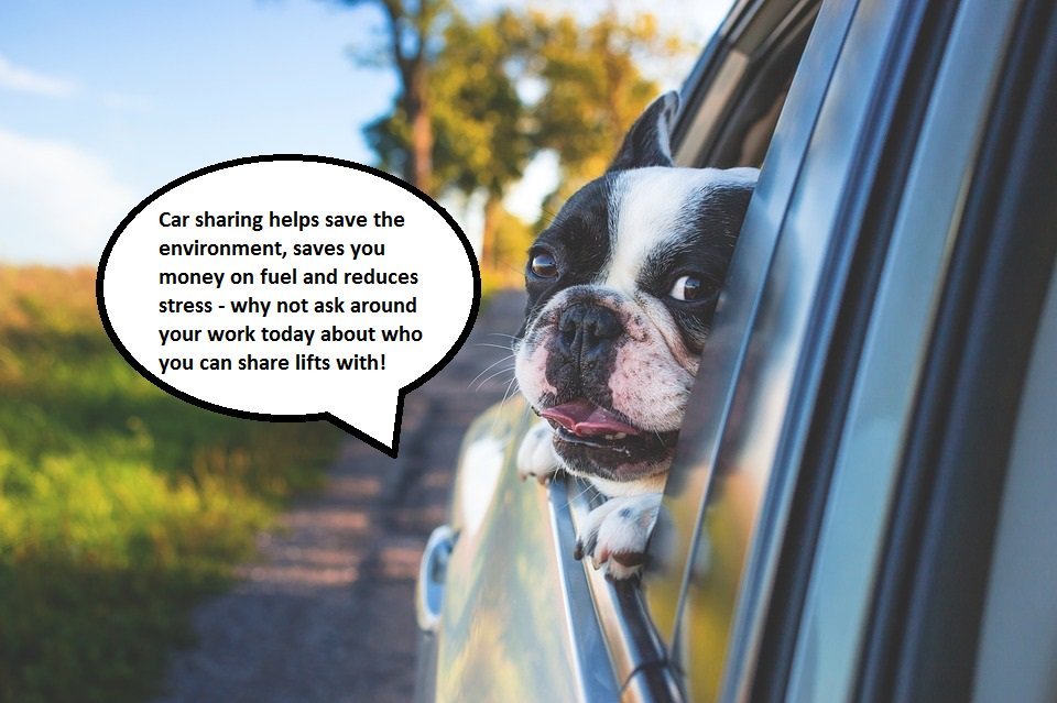 Thinking about car sharing but don&#39;t know where to start?  We have info to point you in the right direction: http:// ms.spr.ly/6014rfevy  &nbsp;   #CarShare <br>http://pic.twitter.com/BNteyCsw0j