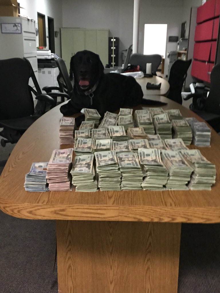 Congrats to K9 Bull who was approved for retirement this morning by the Board of Supes. Since 2010 K9 Bull has helped MCSO w/ investigations leading to seizure of thousands of pounds of narcotics worth millions of dollars. K9 Bull will now get to enjoy retirement w/ his handler. <br>http://pic.twitter.com/RnvVKcUyiv