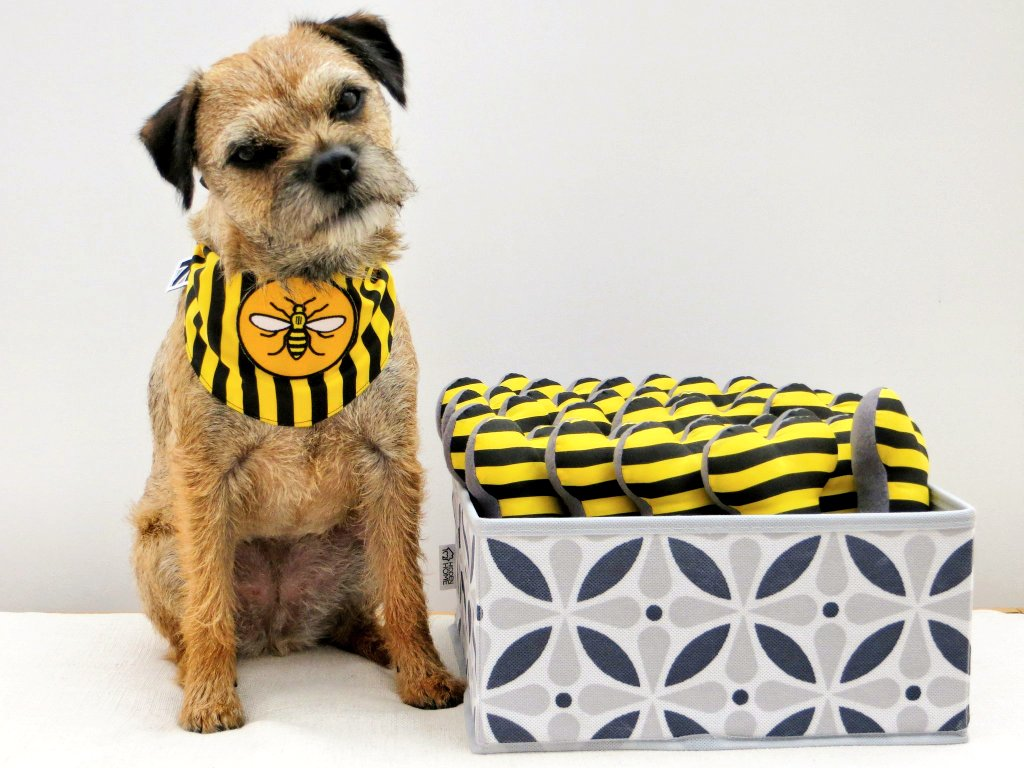 As part of the @manchesterbeeco &amp; @misheleneous #manchester Collaboration - Heidi has added her Squeaky Bee Stripe #dog #bone toys to the Hive  Get your paws on them at  http://www. manbeeco.co.uk/product/bee-st ripe-squeaky-dog-toy-bones-size-medium &nbsp; …    #woofwoofwednesday #SBS #handmadehour #MancMade<br>http://pic.twitter.com/7drwT0omkw