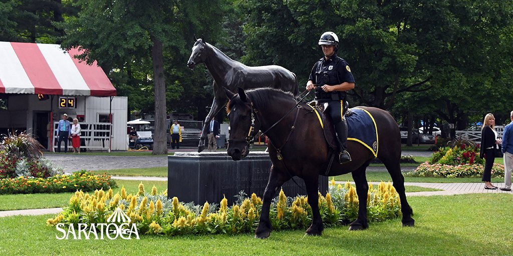 Sometimes, King Tut takes a leisurely stroll through the #Saratoga paddock, and all the time we LOVE it.