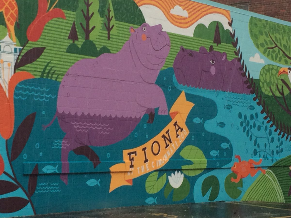 Everyone's favorite hippo Fiona, now has a mural of her and other animals from the zoo located at 9th and Race st. @WCPO @CincinnatiZoo<br>http://pic.twitter.com/GZs7AHBRuN