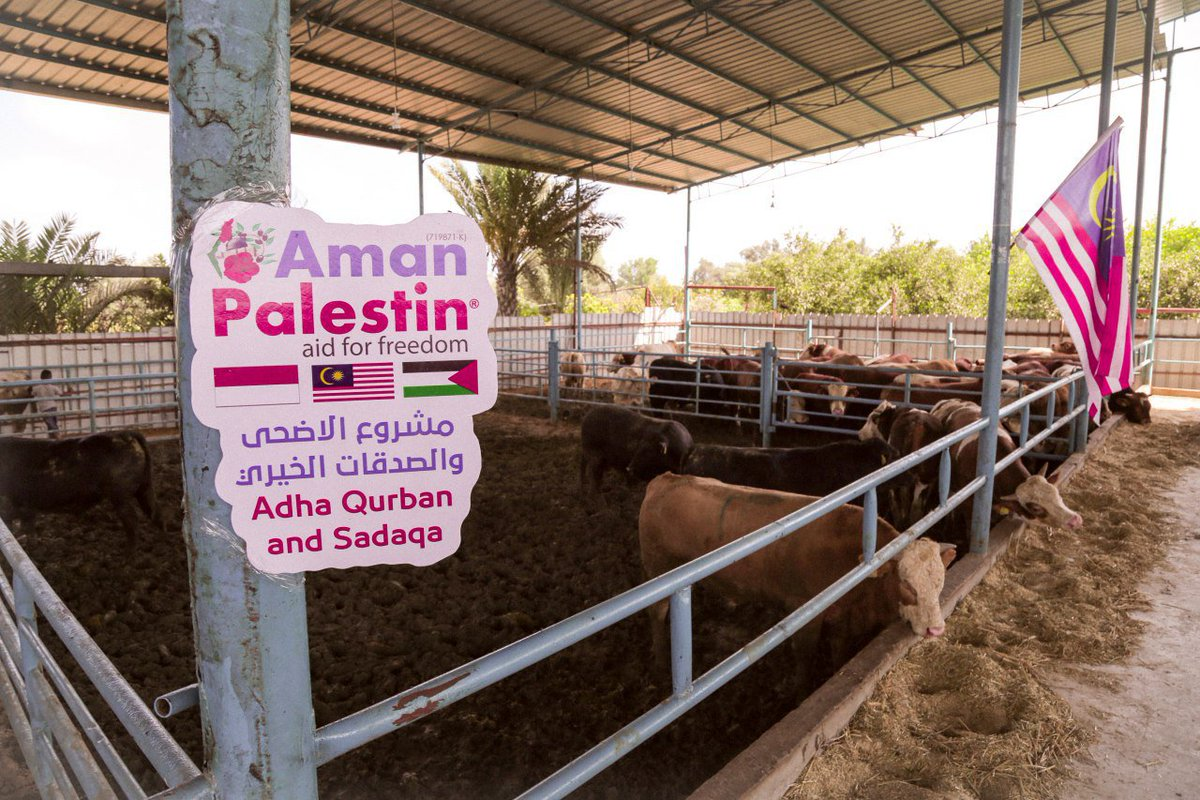 Aman Palestin Cawangan Gaza ketika ini dalam proses persiapan untuk menyambut Ibadah Korban yang tinggal beberapa hari lagi. Aman Palestin masih membuka ruang dan peluang kepada seluruh rakyat Malaysia untuk menyertai Ibadah Korban di Palestin dan Syria bagi tahun 2018.