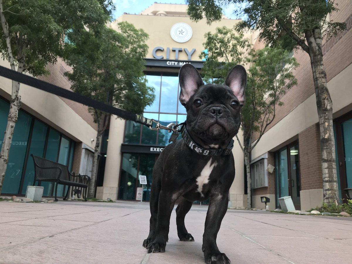 City Of El Paso On Twitter Cash Me Outside For A Cityhallselfie