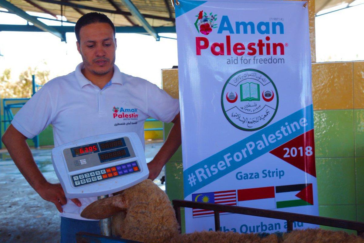 MasyaAllah berat kambing di Palestin seekor 60-63kg . Seekor kambing mampu memberikan manfaat kepada 30 keluarga, satu keluarga anggaran menerima 2kg. Insya-Allah . Ingin menyertai jom whatsApp kami wasap.my/60133972018/Ko…