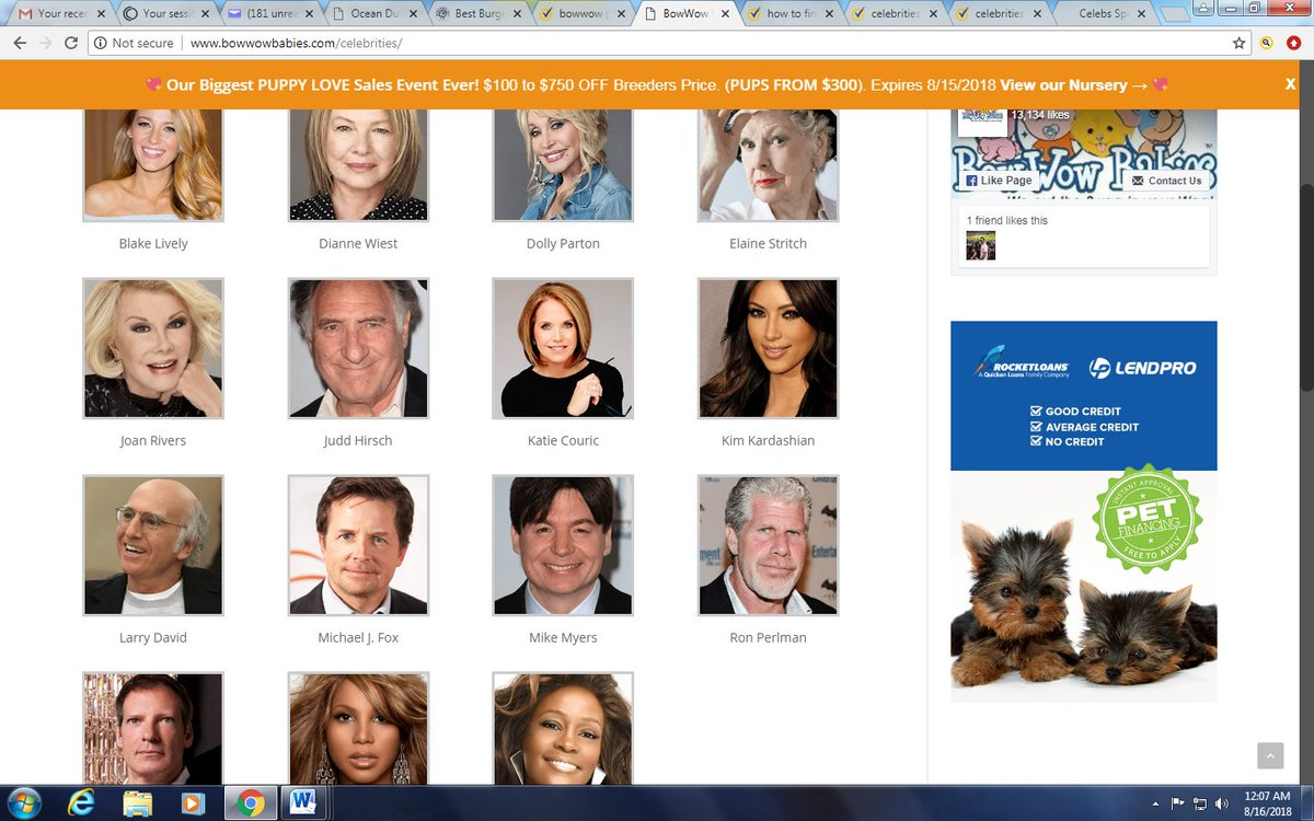 @khloekardashian @blakelively @dianneweist  @DollyParton @ElaineStritch @JuddHirsch @katiecouric @KimKardashian @BeingLarryDavid @realmikefox @AustinShagedMe @perlmutations @tonibraxton You are on a &quot;celebrity&quot; page of a pet store, where it strongly implies you&#39;ve purchased a pup<br>http://pic.twitter.com/FX3FfMDAmP