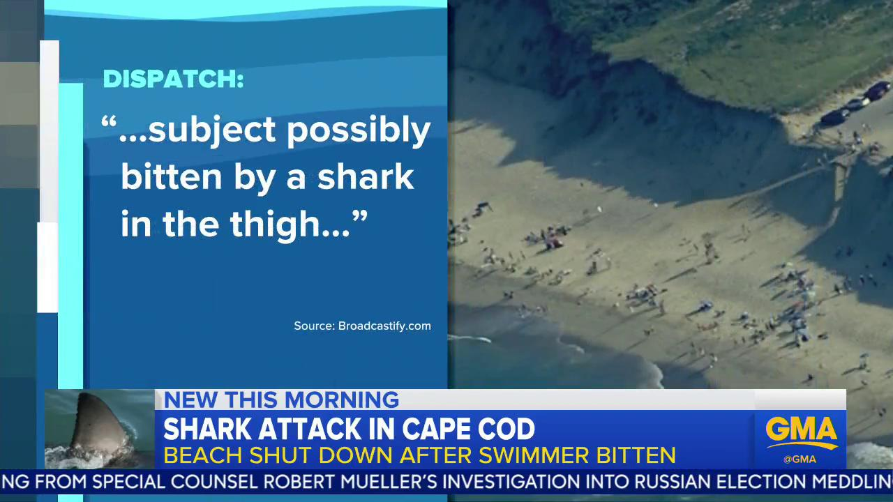 Shark attack in Cape Cod; beach shut down after swimmer bitten. @tjholmes has the story: https://t.co/0wZJnpowI9 https://t.co/7NbKTyyEkr