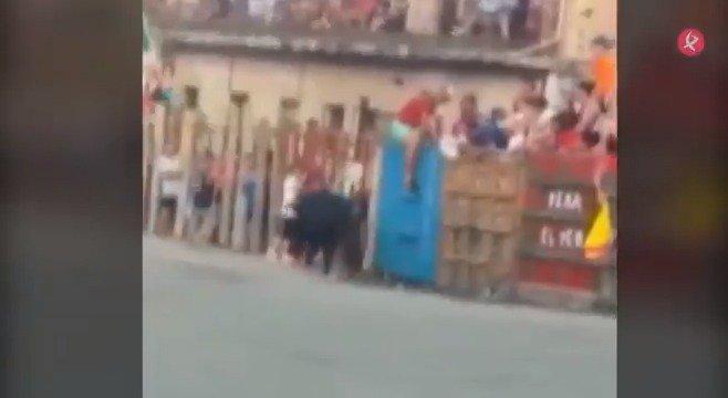 #GarrovillasDeAlconétar celebra estos días sus fiestas patronales... con susto incluido. Ayer tarde una mujer fue arrollada por un toro en la lidia tradicional. Según los testigos, estaba intentando hacer una fotografía cuando fue embestida. Se encuentra en estado grave. #EXN https://t.co/aOvTgjyegr