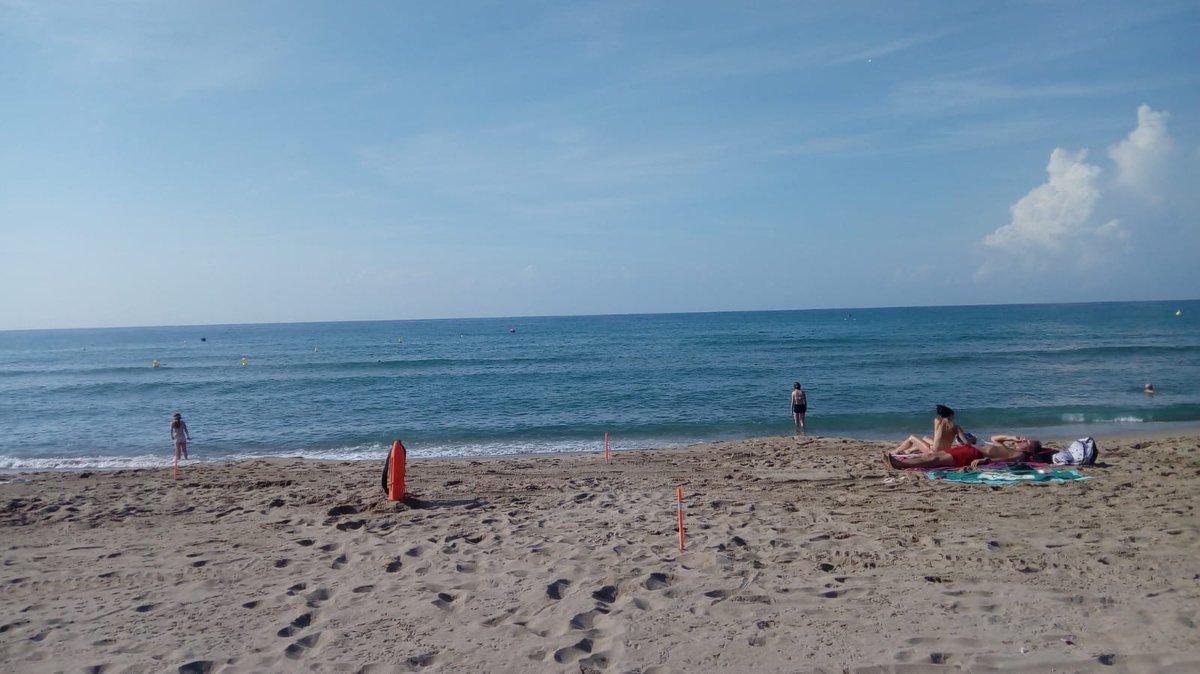 Estado de la #platjadecastelldefels hoy jueves 16 de agosto Bandera: Verde Mar Plano Calidad del agua: Buena Temp del agua: 26º Temp ambiente 29º Indice uv: 7 Hay medusas: pocas (Rhizostoma Pulmo) +INFO: platjadecastelldefels.org