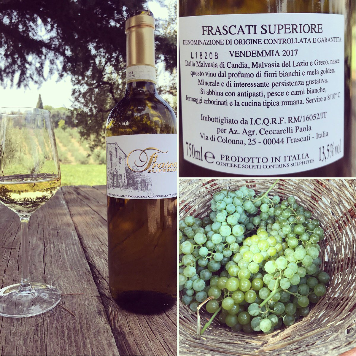 Fiori Bianchi Vino.Old Frascati On Twitter Our 2017 Frascati Superiore Is Here