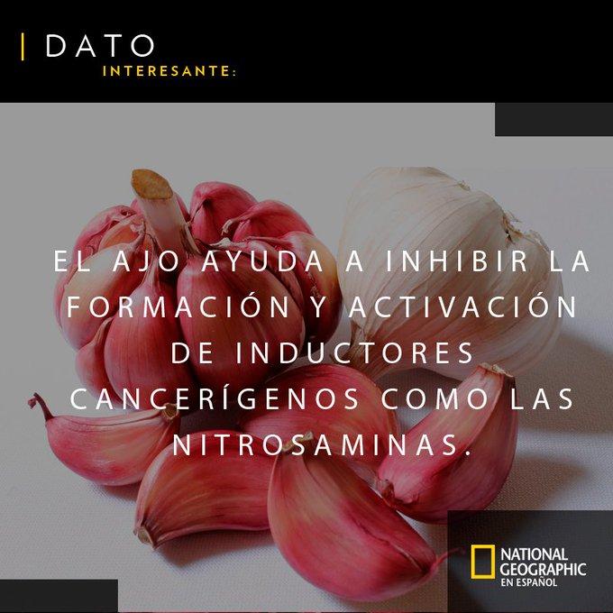 ¿Sabías que el ajo beneficia a tu organismo de esta manera? #FelizMiércoles Photo