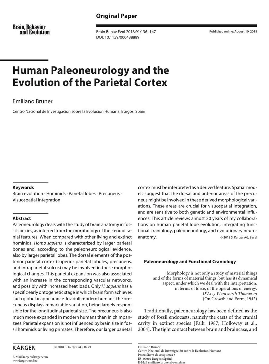 paleoneurology and the evolution of mind Human brain evolution as seen from paleoneurology it is important to keep in mind that roughly 4 my of evolutionary time has existed for hominid humans paleoneurology table 3 major cortical areas (brodmann s) involved in reorganization changes (with major emphasis on the evolution of.