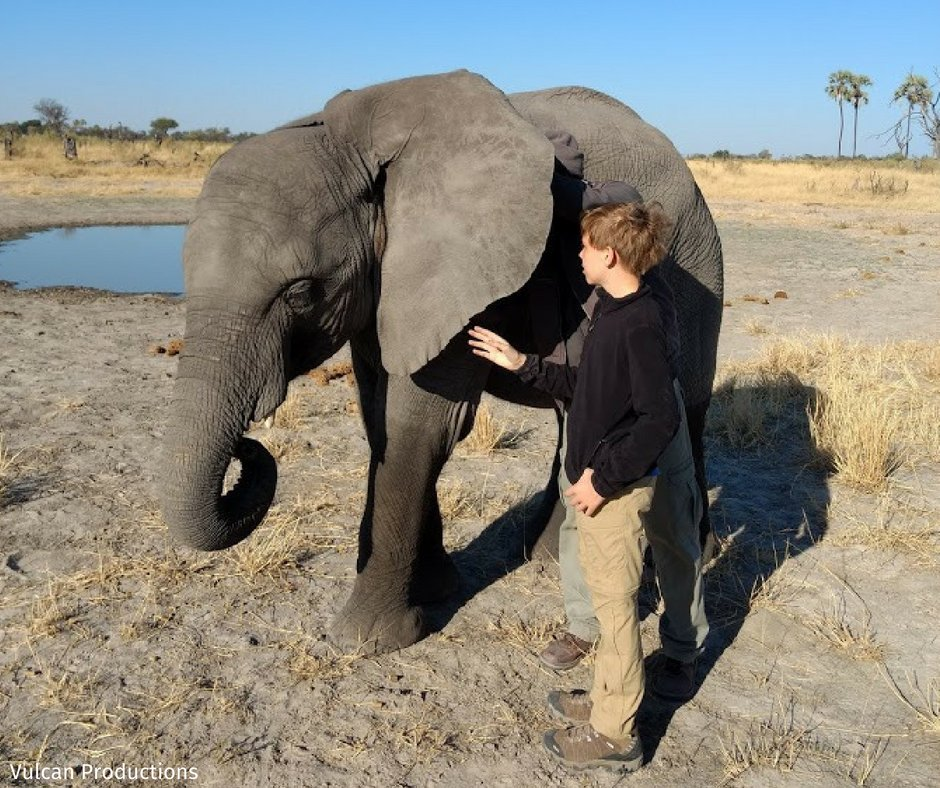 WATCH: @KATVElicia interviewed Every Elephant Counts Contest winner, Ben Radke for @GoodAfternoonAR! Along with our #Arkansas affiliate, @ArWildlife, we are proud to see young conservationists like Ben making a difference for wildlife everywhere! bit.ly/2KVBoEc