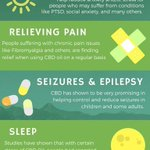 5 Health Benefits of CBD Oil 🌱✨ https://t.co/3zSpme7o6g 🌱✅  #CBDOil #CBD #HempOil #HempOilExtract #Vape #Vaping #Organic #USARaised #Colorado #California #Anxiety #Stress #Health #CBDBenefits #PainRelief #ShopNow #TheMoreYouKnow #ShopSale #ShopCBDSale #ChronicPain #Depression
