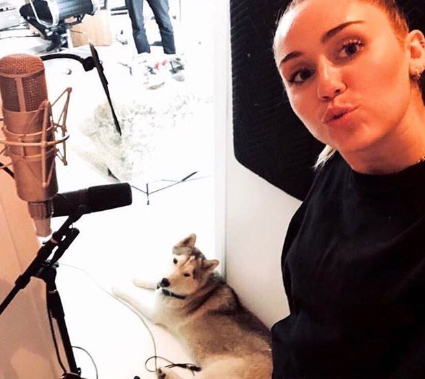 If miley is not coming before the vmas or at the vmas what was the point of the blackout? What was the VS secret project we know nothing about? Why keep posting photos in the studio since April? Why talking about going to LA to work on a project (ofc an album) on The Jimmy Kimmel <br>http://pic.twitter.com/J0SZvxVgsf