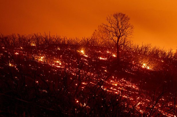 According to data from the US National Oceanic and Atmospheric Administration, July 2018 was California's hottest month of all time, while spring and summer temperatures in the state have warmed by an enormous 5.4 F (3 C) since 1980  #climate #wildfires<br>http://pic.twitter.com/7Qm5H2dEgv