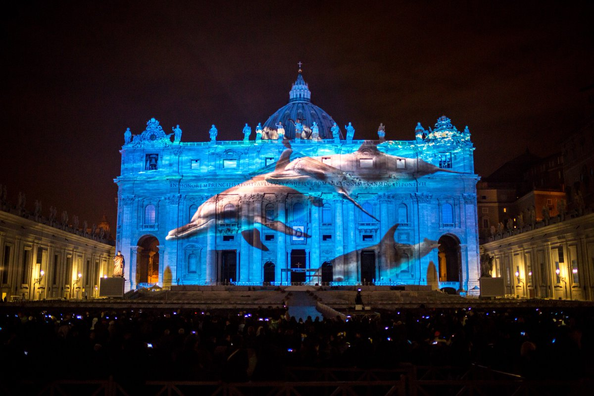 Let&#39;s shine a light on those that need a voice the most...#EndangeredSpecies OPS projects on The Vatican.  #Tbt #RacingExtinction #TheCove #dolphins #sharks #Rhinos #Elephants #Bees<br>http://pic.twitter.com/3HsKSDX9rC