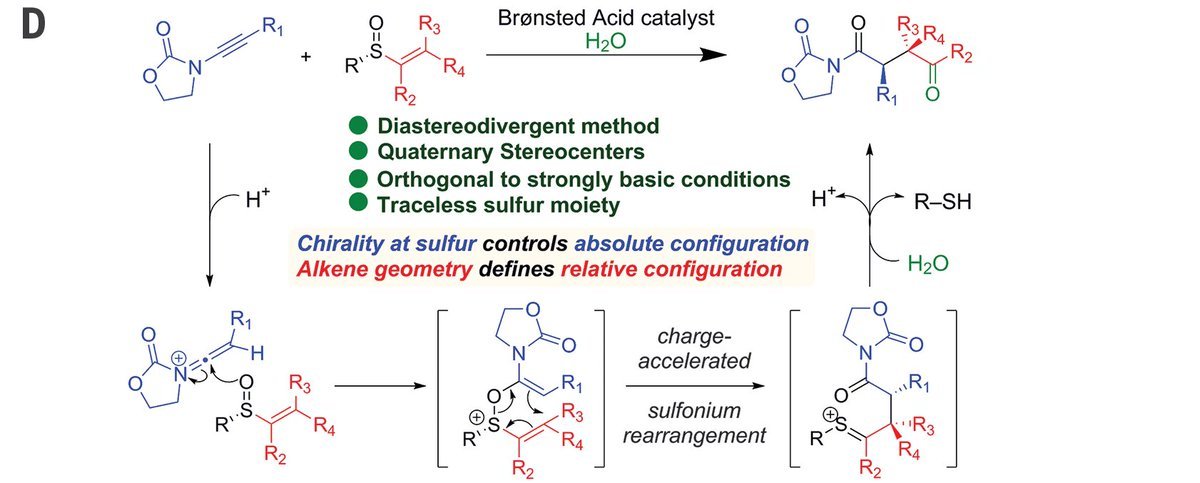 Our solution to making all possible isomers of 1,4-dicarbonyls at will was just published @sciencemagazine  http:// science.sciencemag.org/content/361/64 03/664 &nbsp; …  @univienna #sulfurrules #wheredidthesulfurgo<br>http://pic.twitter.com/ALxZwDPpJh