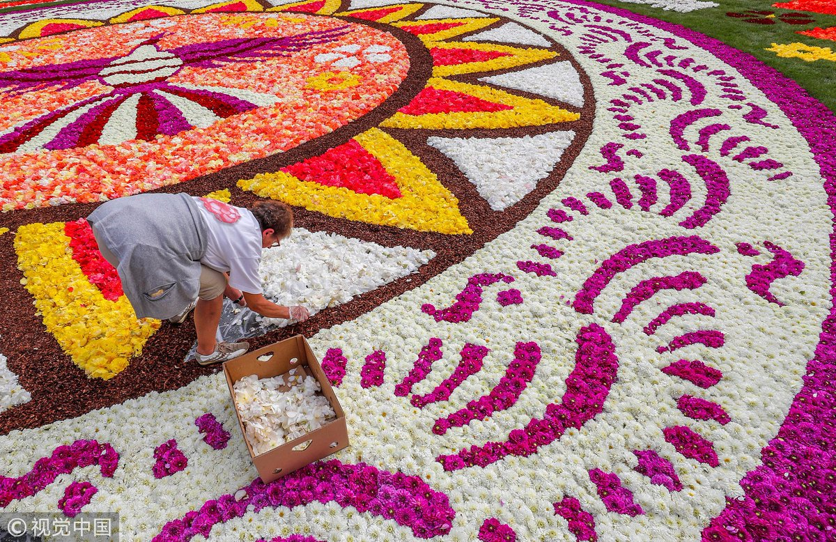 A stunning flower carpet made primarily of 500,000 dahlias and begonias was unfurled at Brussel's Grand Palace. This year, the floral masterpiece focuses on 'Guanajuato, cultural pride of Mexico.' The Flower Carpet of Brussels has been held every two years since 1971