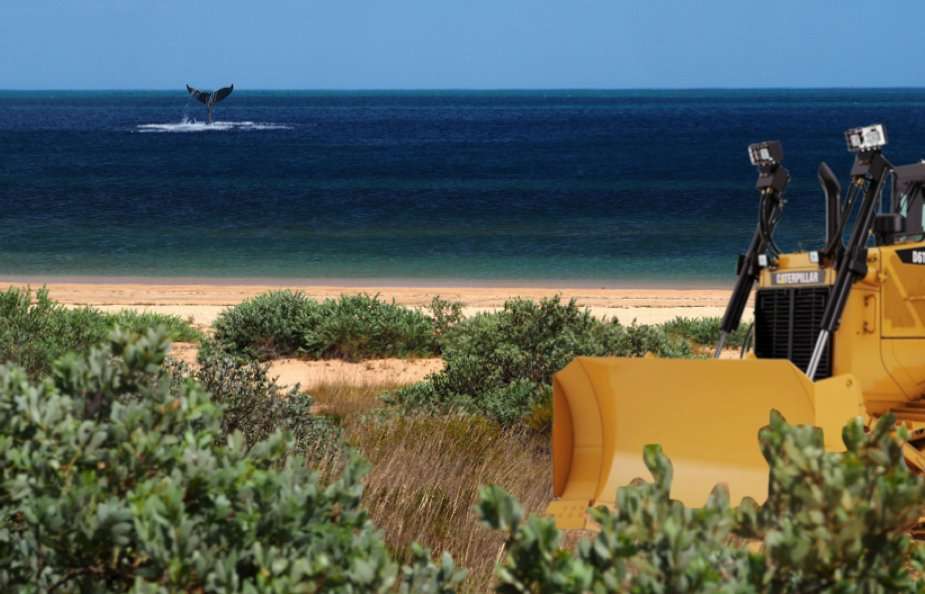Due to changes made under Barnett, companies can clear land *before* their projects are approved  As a result, this company is about to send bulldozers to the Exmouth coast - right near Ningaloo Reef:  https:// buff.ly/2Pae3lv  &nbsp;    Follow @protectningaloo to find out how you can help!<br>http://pic.twitter.com/CFQvtJFmR0