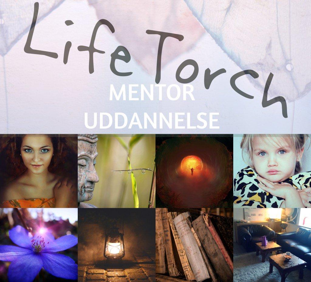 Bliv uddannet EquineTorch & LifeTorch mentor på eengang! http://hestemennesker.dk/bliv-uddannet-equinetorch-lifetorch-mentor-paa-een-gang/…pic.twitter.com/5QpjBtcCIw