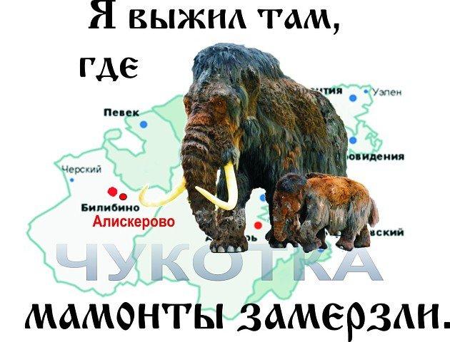 картинка я выжил там где мамонты замерзли открытки курбан