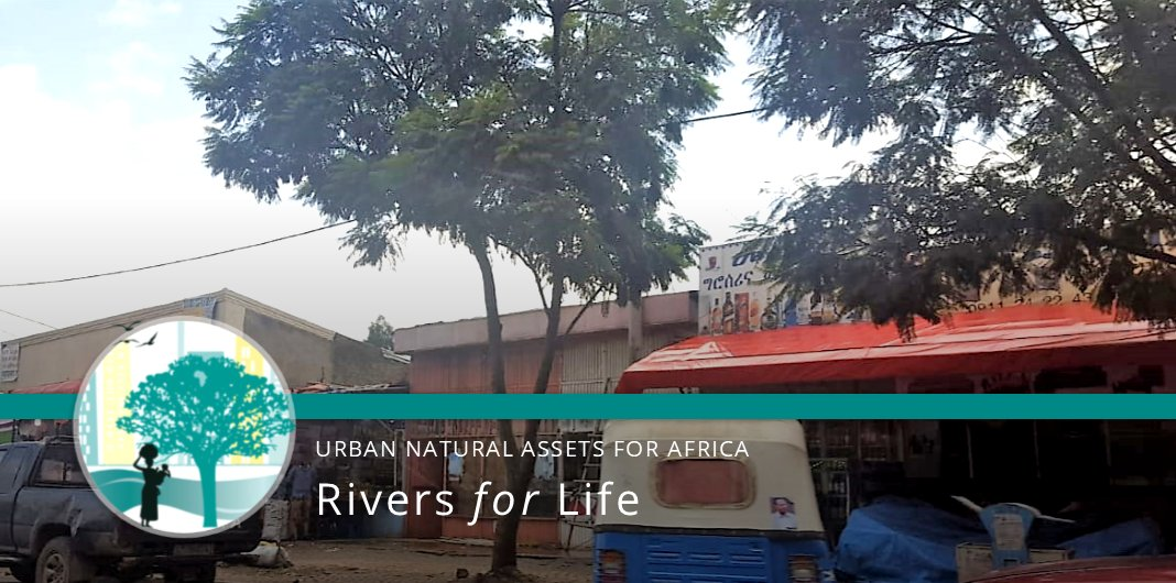 #Urbangreening in the #Bolo District of #AddisAbaba #Ethiopia, supported by the #UNARivers team, provides local residents with clean air, shade, cooling, shelter etc.   See what else we get up to through the project: https://t.co/WMaO6Z3K3r @SwedBio @sthlmresilience @Sida