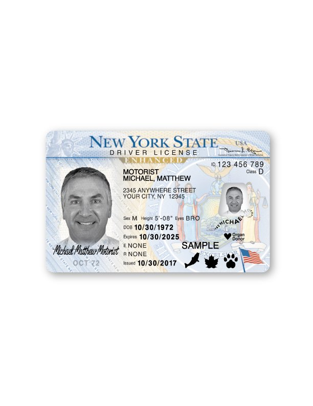 Dmv 2020 License Cost You Id Enhanced After An A Extra On Consider Added To hlg co Https t For At No Want More Or Find License s Out 30 U