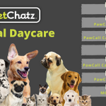 Image for the Tweet beginning: PetChatz Digital Daycare in Emoji's 👩💓🐶  👩