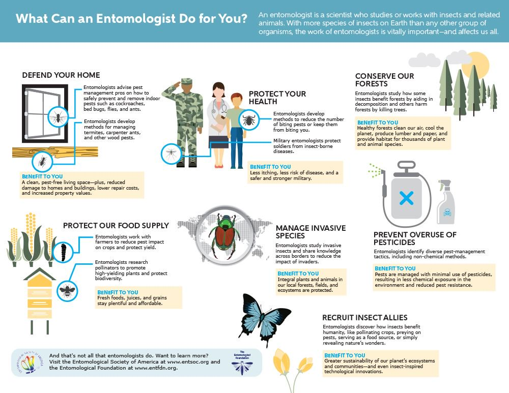 Entomological Society of America on Twitter: