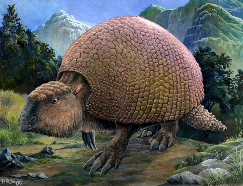 самое первое животное на земле фото