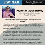 """Save the date - our next seminar will be on Tuesday 4th September. Professor Professor Kieran Harvey from the @PeterMacCC @ @MonashUni, will present on """"Control of organ growth, cell fate and cancer by the Hippo pathway"""". (No, not that hippo🦛...) See you then!"""