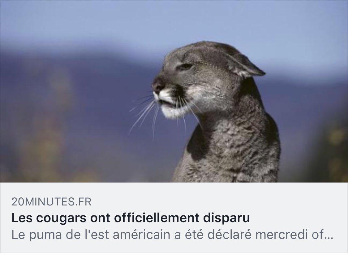 Baise Lesbienne De Trois Amatrices Françaises