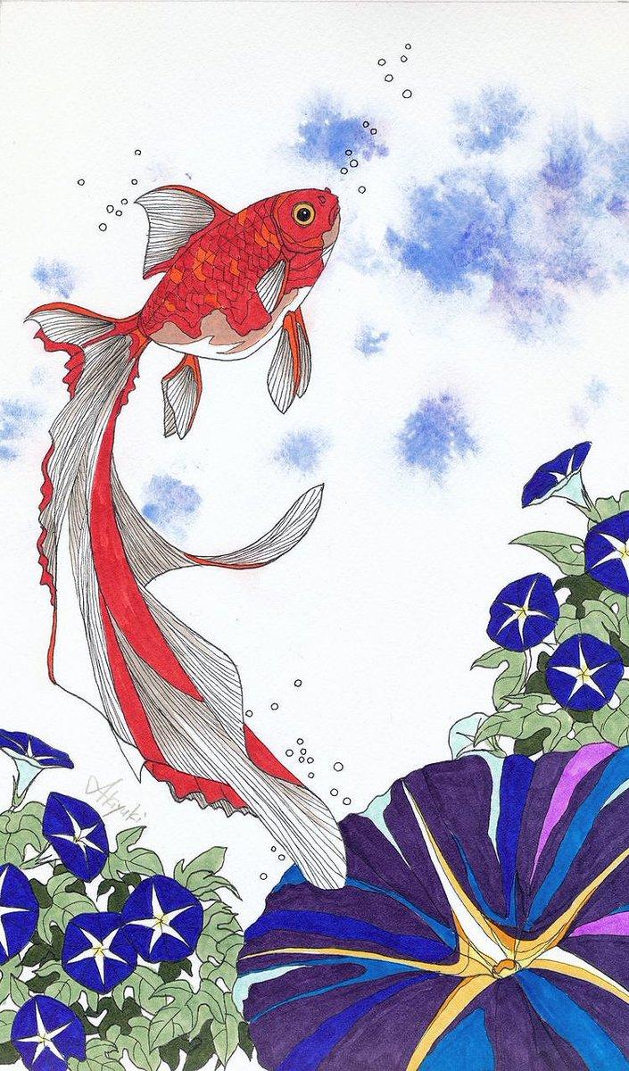 金魚イラスト Hashtag On Twitter