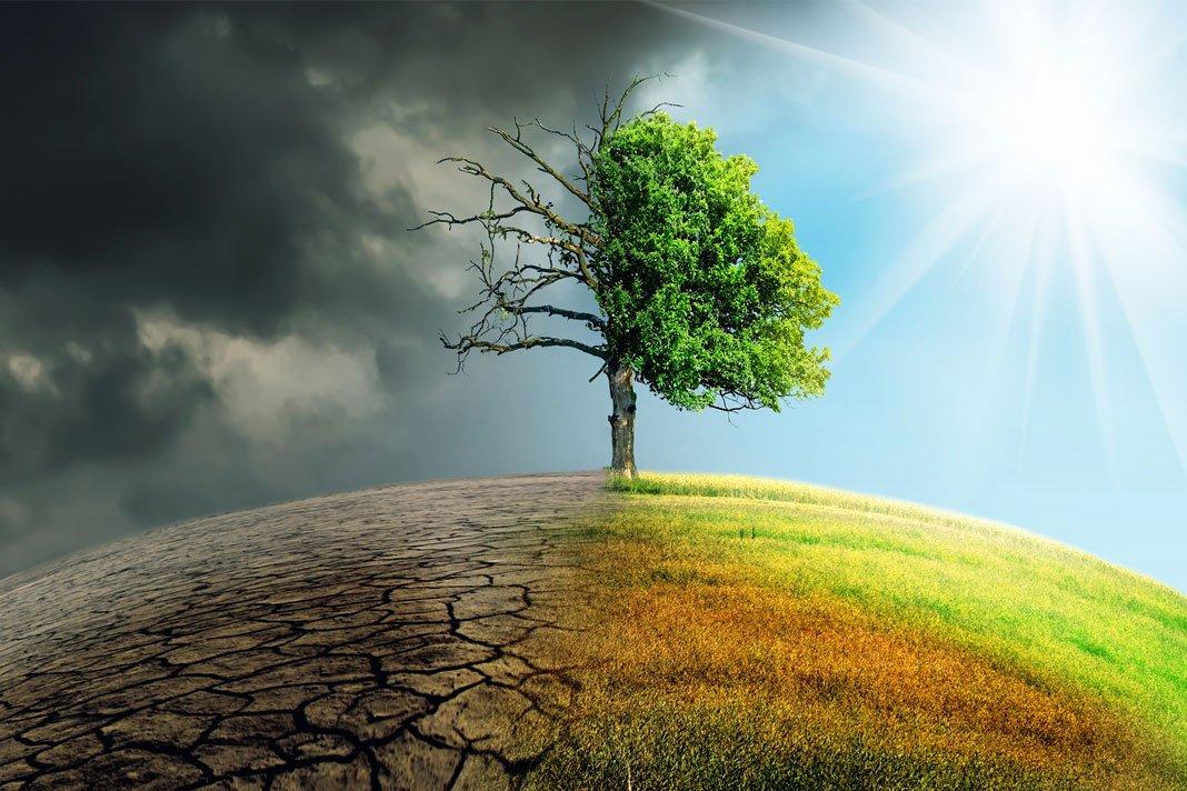 ebook основы устойчивого управления лесным хозяйством учебное пособие для общеобразовательной