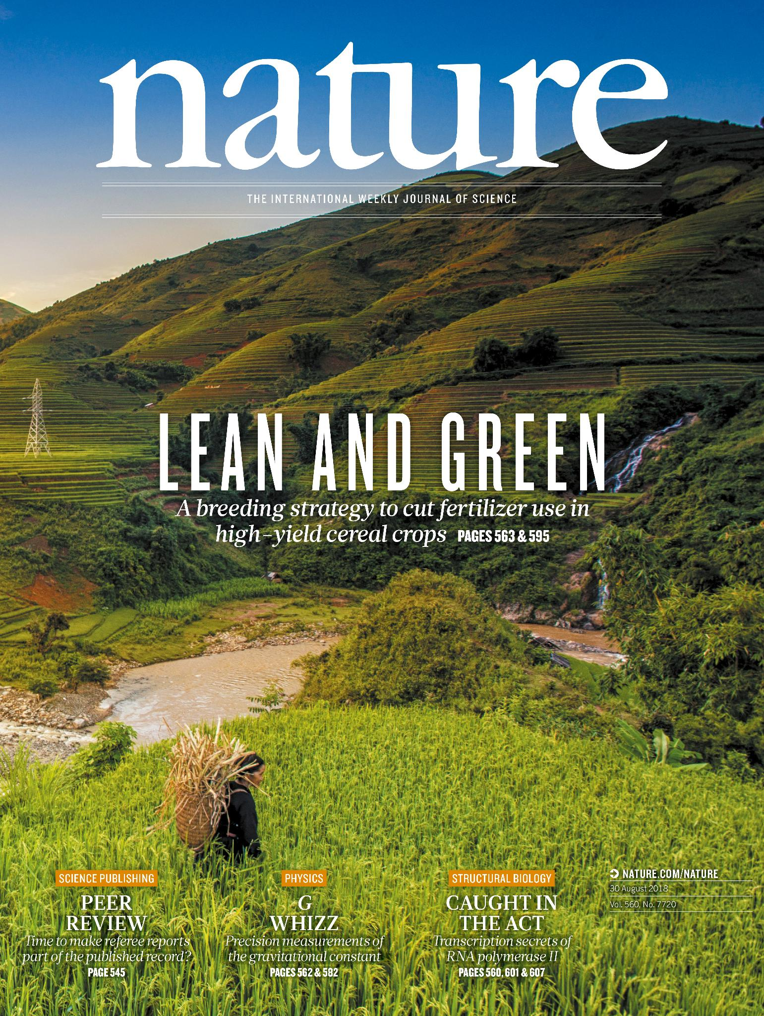 Nature On Twitter On The Nature Cover This Week Lean And
